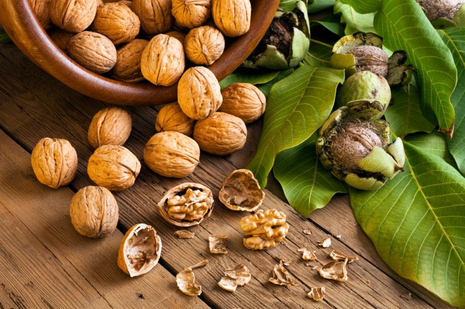 лечение грецкими орехами