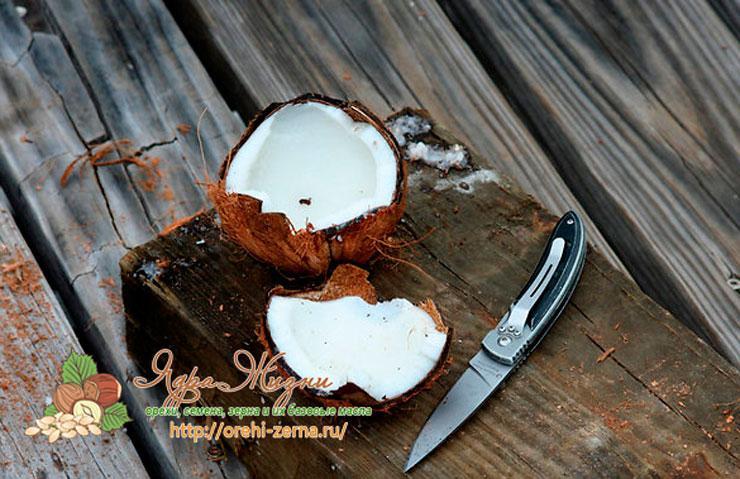 Кокосовый орех: полезные свойства