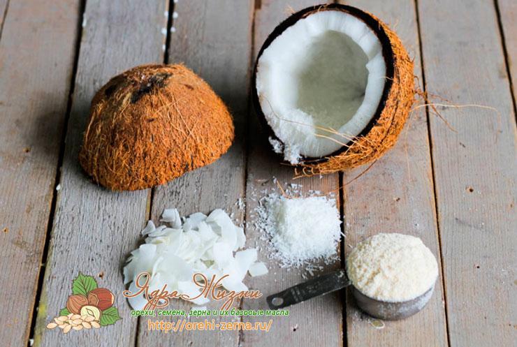 Мука кокоса: полезные и лечебные свойства