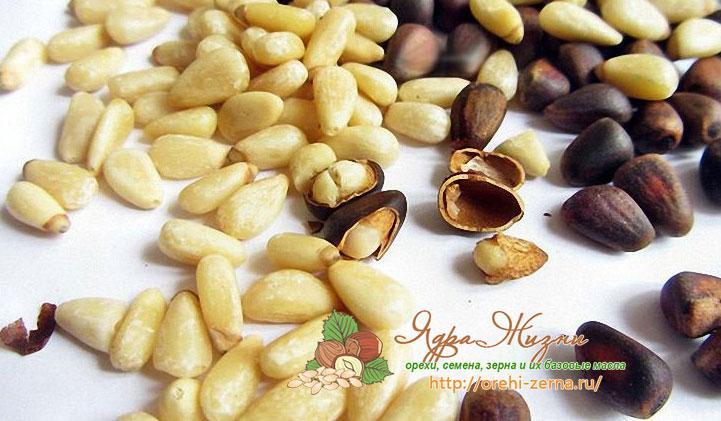скорлупа кедрового ореха для лечения