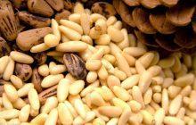 Ядра кедровых орешков