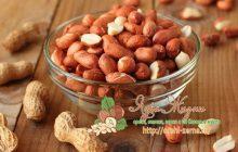 земляной орех арахис