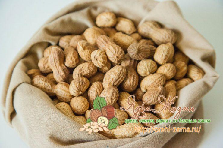 Полезные свойства арахиса для организма