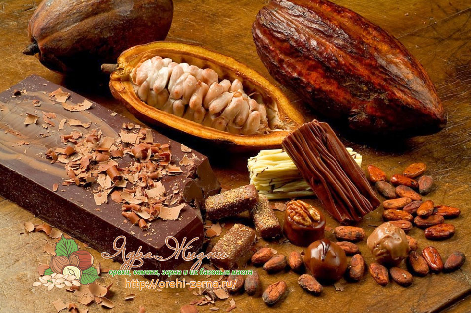 пищевое масло какао