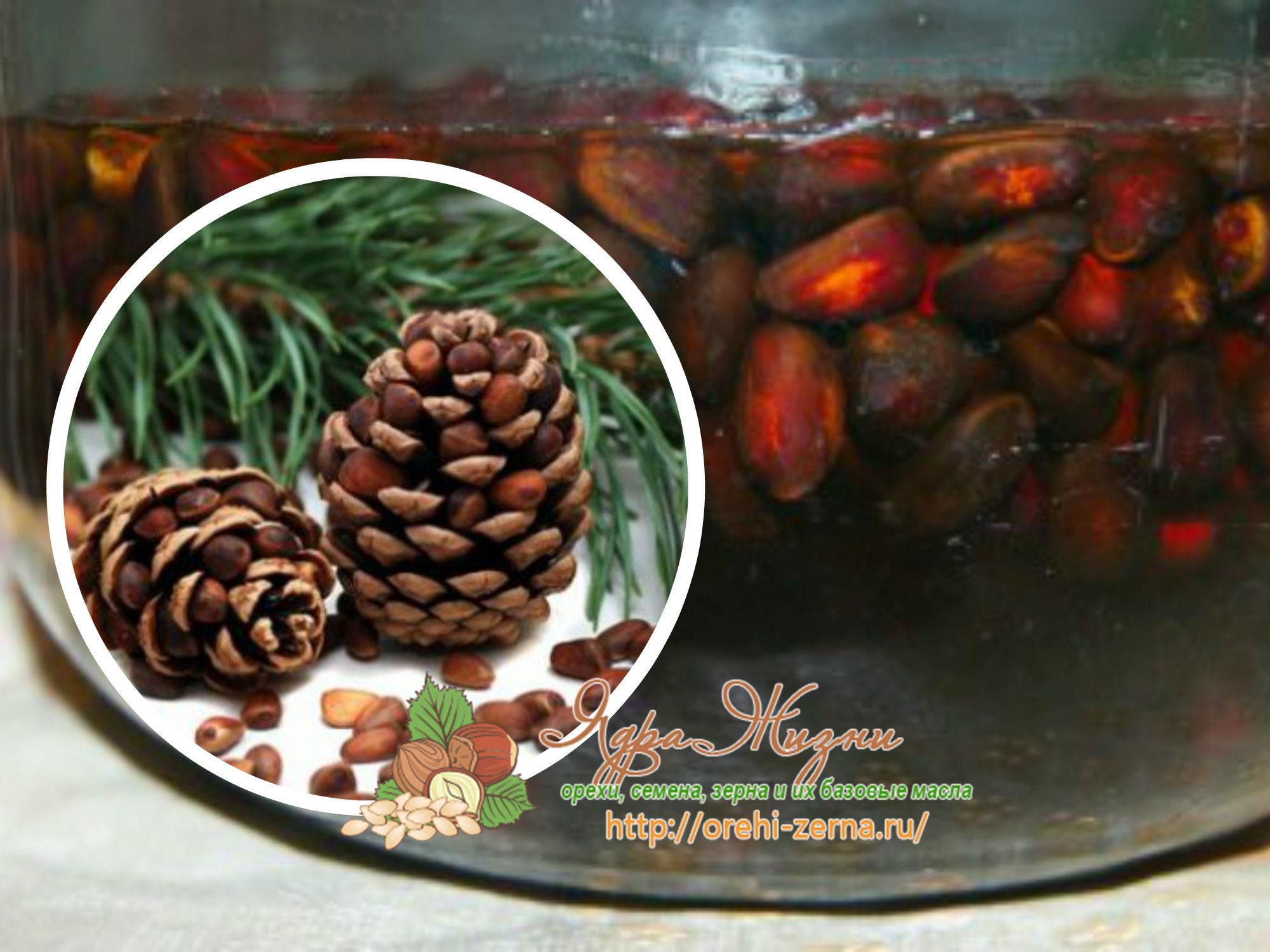 настойка кедровых орешков