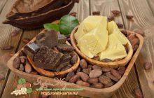 kakao-masl