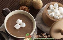 рецепт какао с молоком