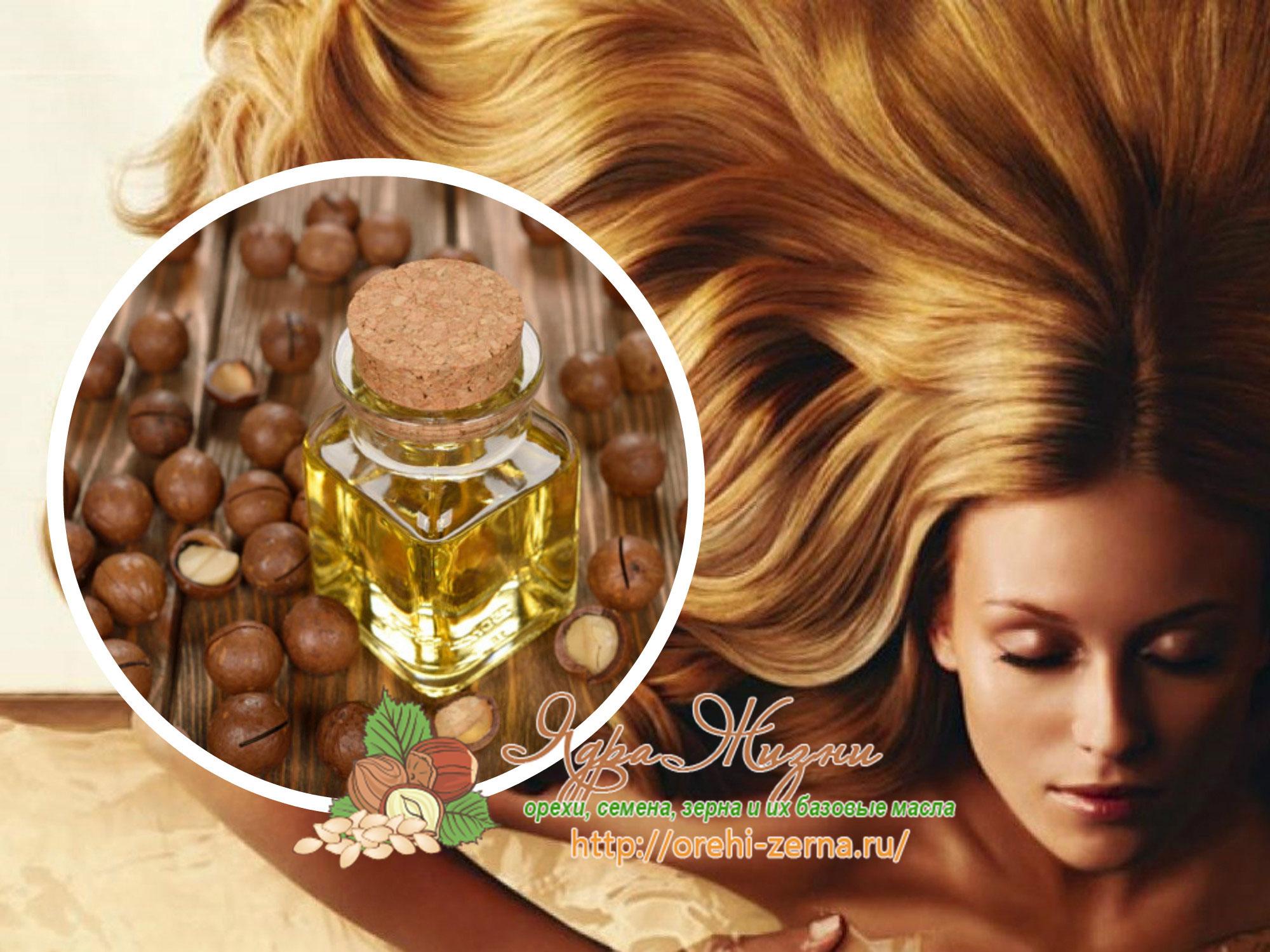 Полезные свойства масла макадамии для волос