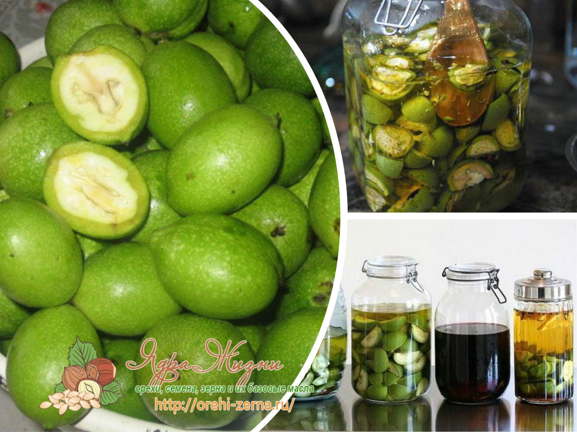 Рецепт приготовления настойки зеленых грецких орехов на спирту