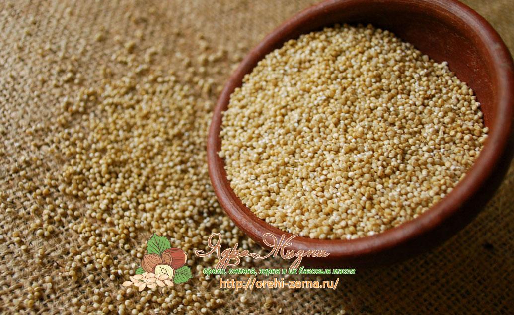 лечебные свойства амаранта
