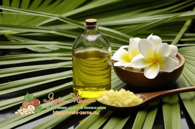 растительные масла применение