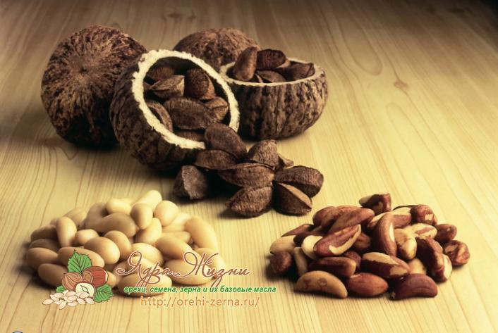 бразильский орех польза и вред