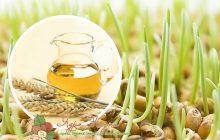 масло зародышей пшеницы полезные свойства