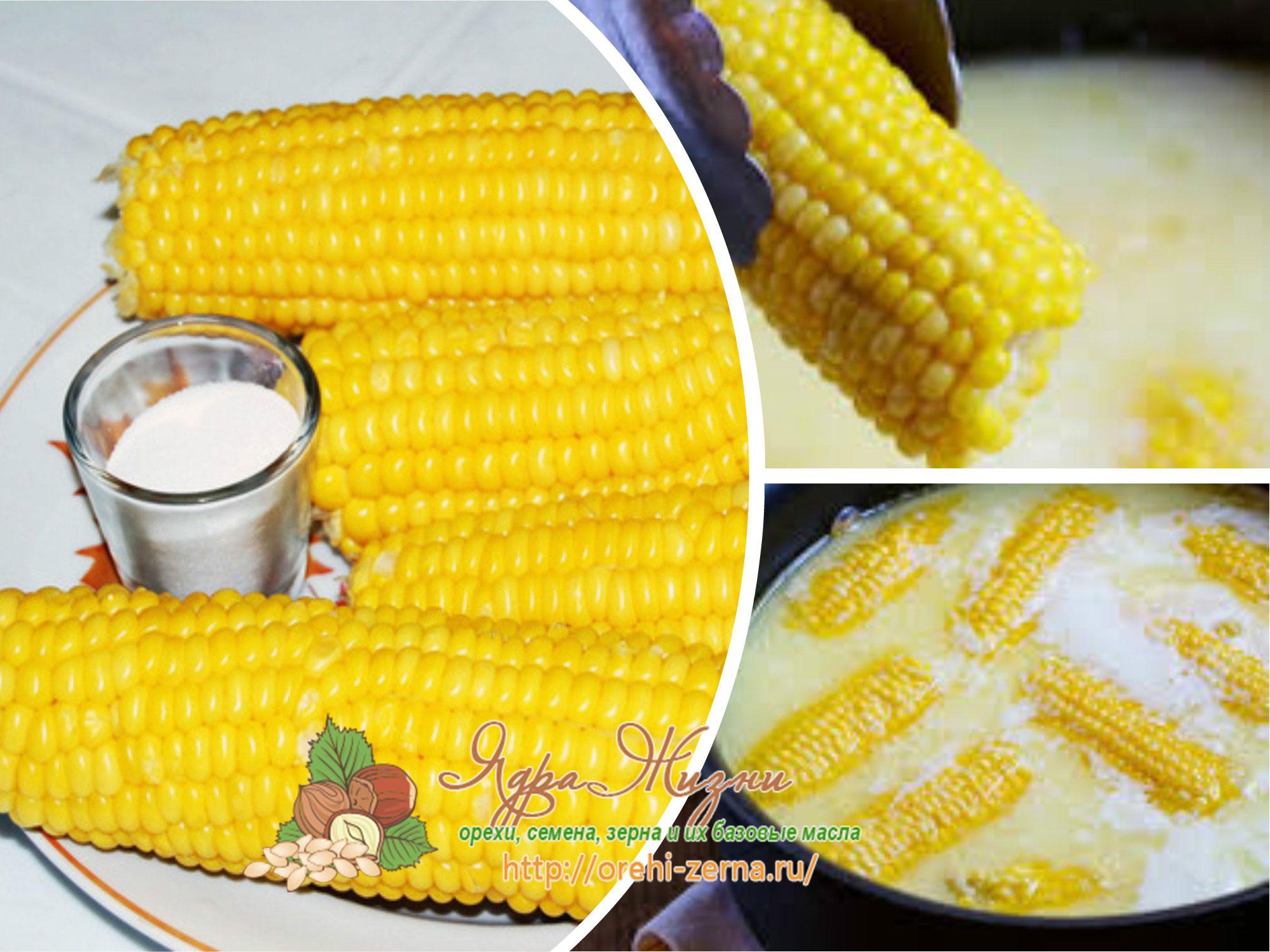 как готовить кукурузу в початках