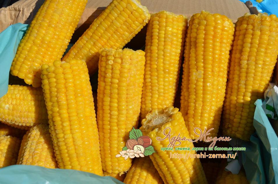 замороженная кукуруза в початках