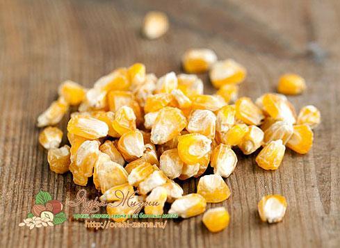 пророщенная кукуруза польза и вред