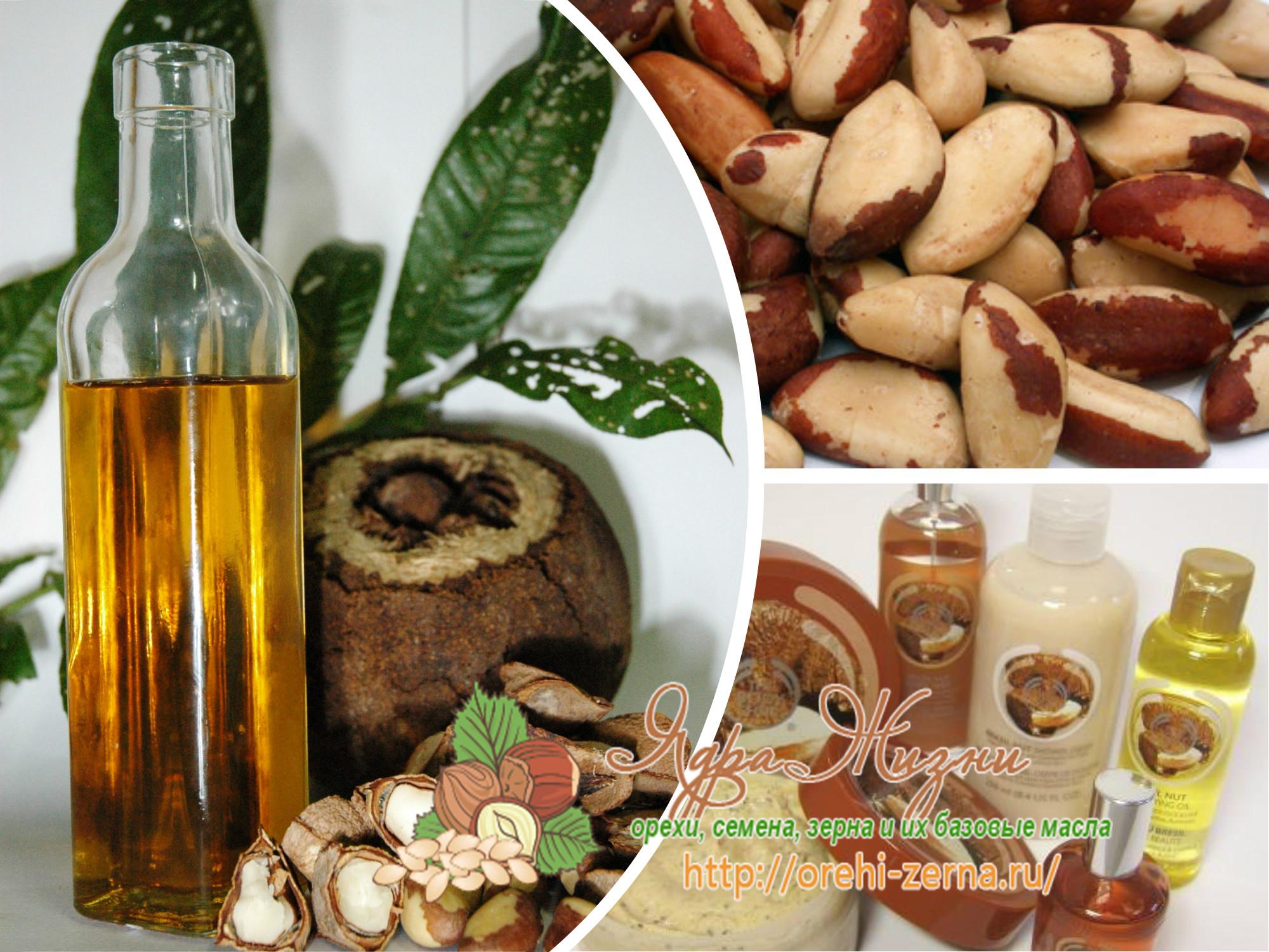Применение масла бразильских орехов