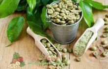 зеленый кофе польза и вред