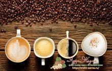 Кофе и кофейные напитки