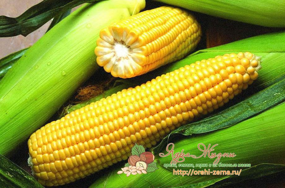 Краснодарская кукуруза