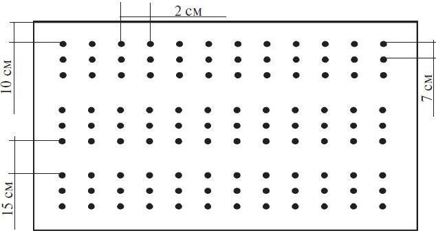 Схема посадки гороха в открытый грунт