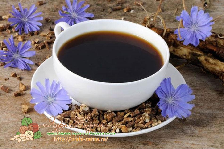 Цикорий - лучшая альтернатива кофе без кофеина