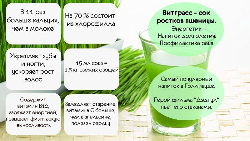 инфографика витграсс