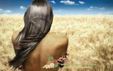 ржаная мука для волос