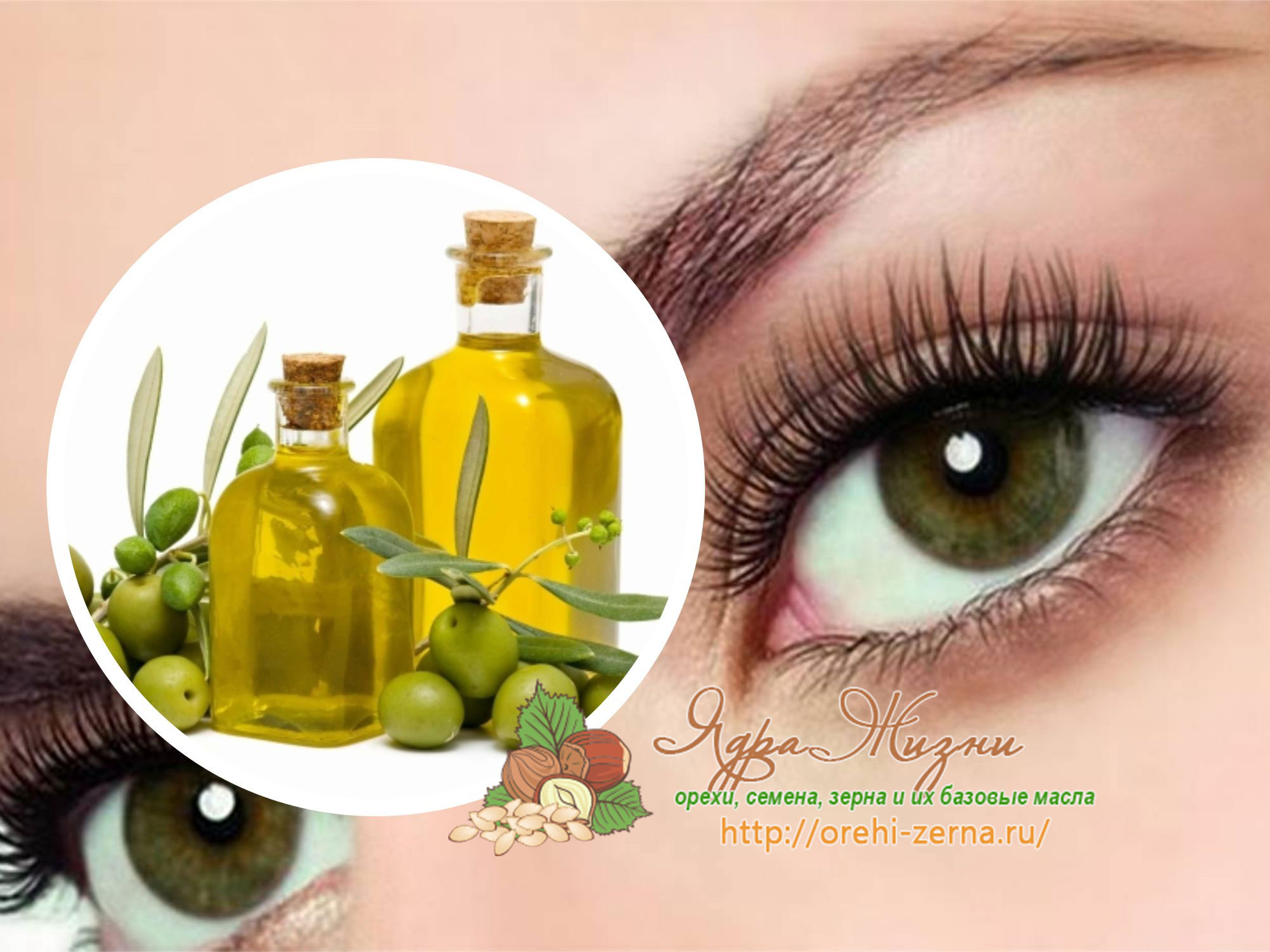 Оливковое масло на ресницы можно