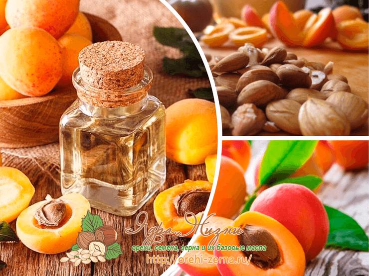 Абрикосовое масло польза и вред для организма