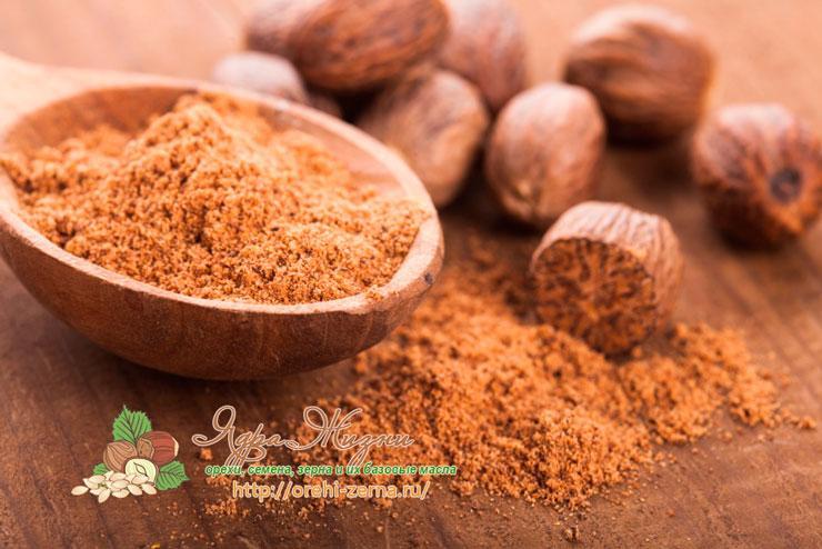 Полезные и лечебные свойства мускатного ореха