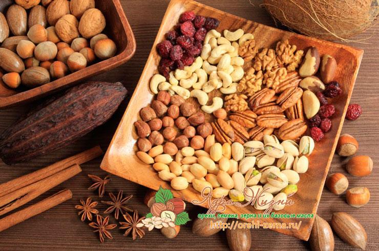 Все про орехи, семена и зерна