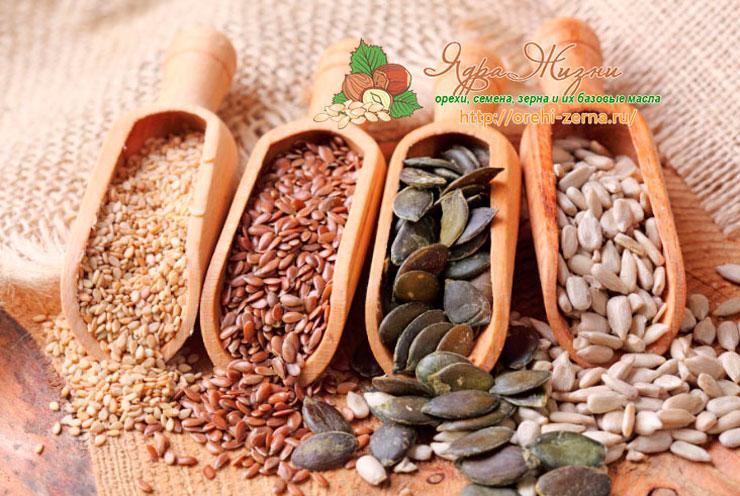 Все про семена и зерна