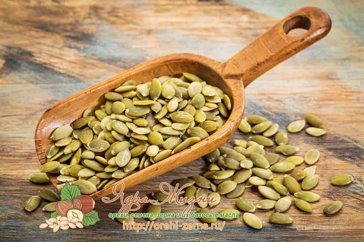 Полезные свойства тыквенных семян