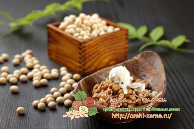 Ферментированные соевые бобы