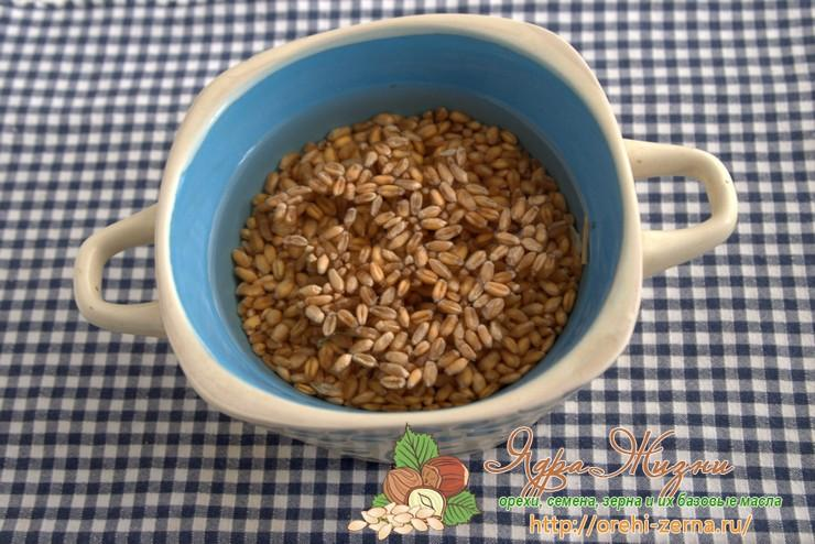Как прорастить пшеницу рецепт