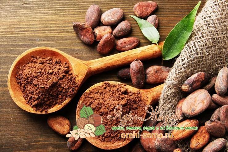 Полезные свойства какао порошка для мужчин и женщин