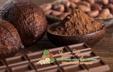 состав натурального горького шоколада: сколько процентов какао