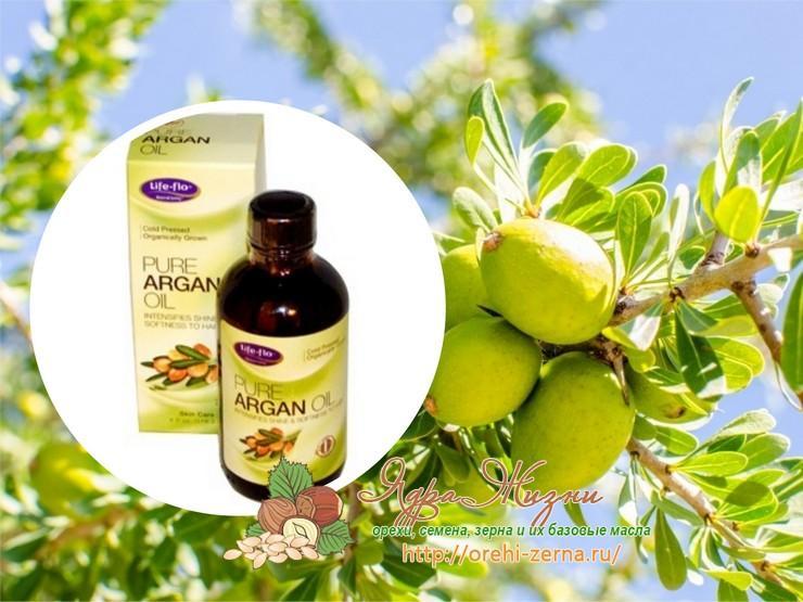 Полезные свойства масла арганы