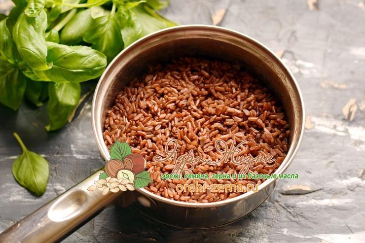 красный рис с кальмарами рецепт с фото