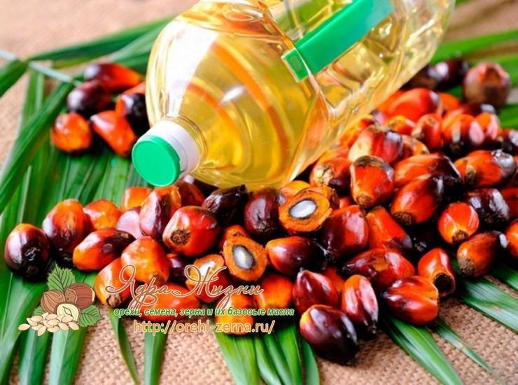 температура плавления пальмового масла