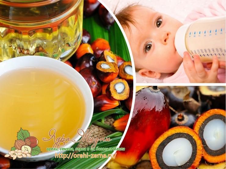 Вред пальмового масла в детском питании
