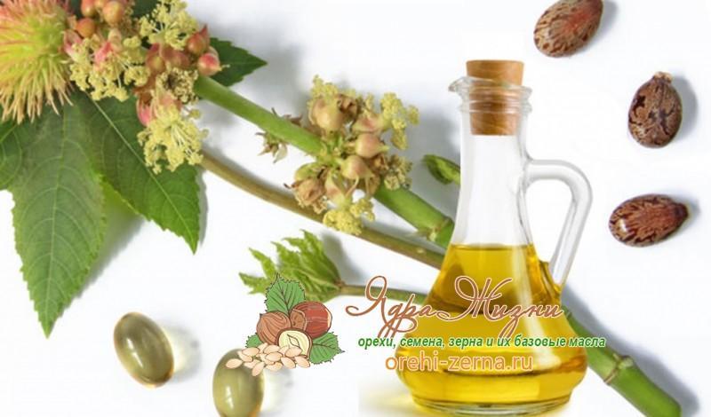 Как применять очищение касторовое масло для очищения