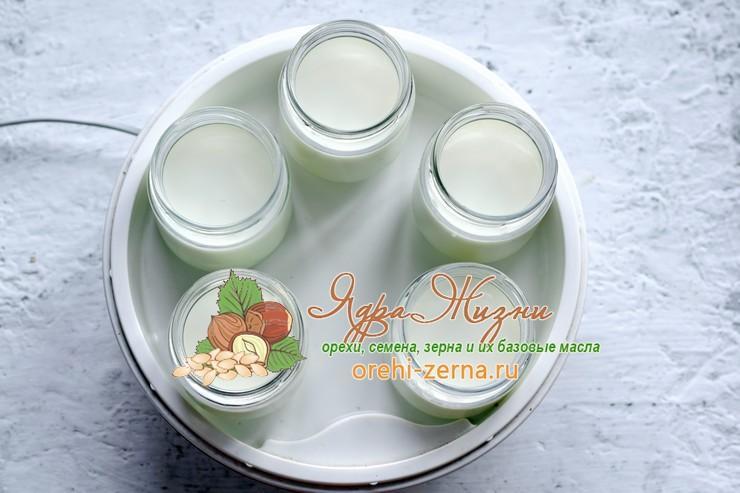 йогурт на кокосовом молоке рецепт в домашних условиях
