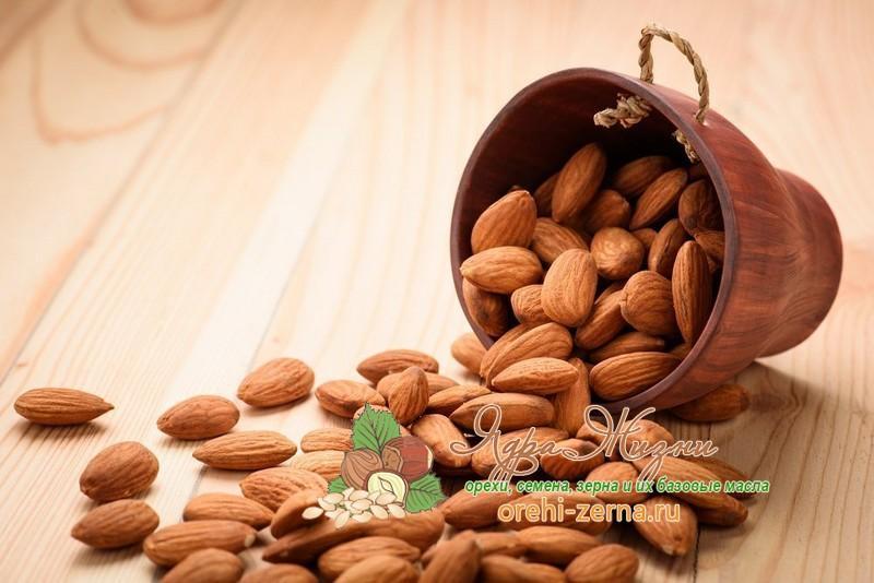 Как выбрать орехи миндаль при покупке: важные советы