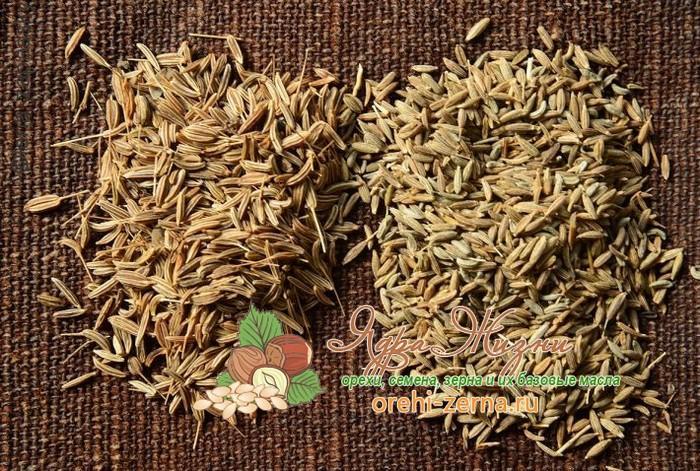 Полезные свойства семян зиры