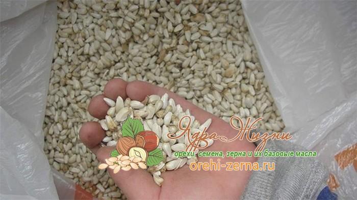 Полезные свойства семян сафлора