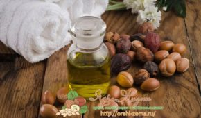 Миниатюра к статье Полезные свойства масла арганы в косметологии, медицине, от растяжек при беременности, также для ногтей в чистом виде