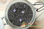 Миниатюра к статье Уникальность пророщенных семян чиа, их полезные свойства для организма и инструкция