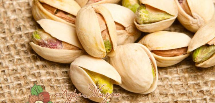 Миниатюра к статье Фисташки — польза и вред, состав, свойства и применение орешков